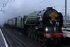 British steam special trains, 2007 - 2010 : 5 galleries with 268 photos